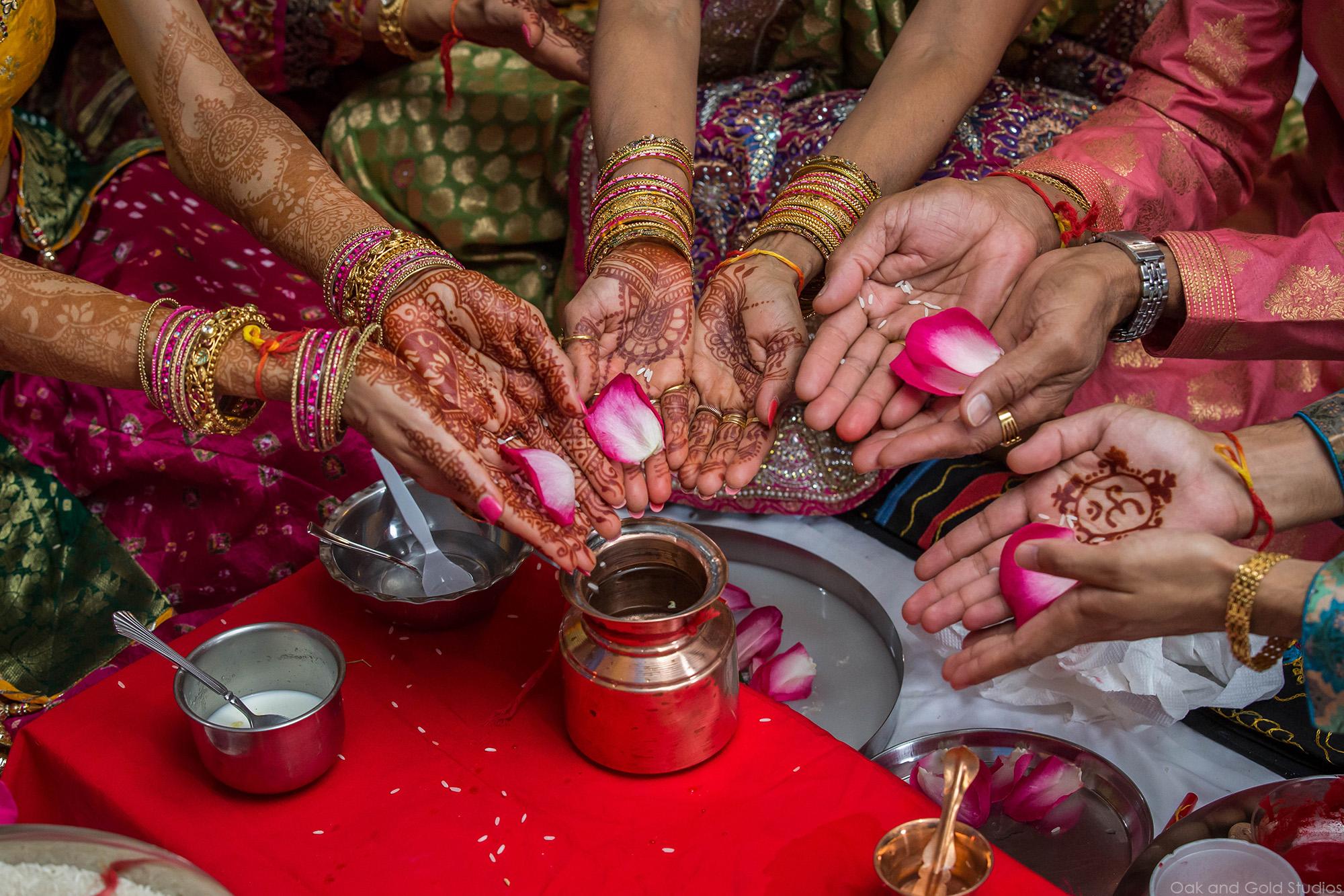 hindu_rose_petals