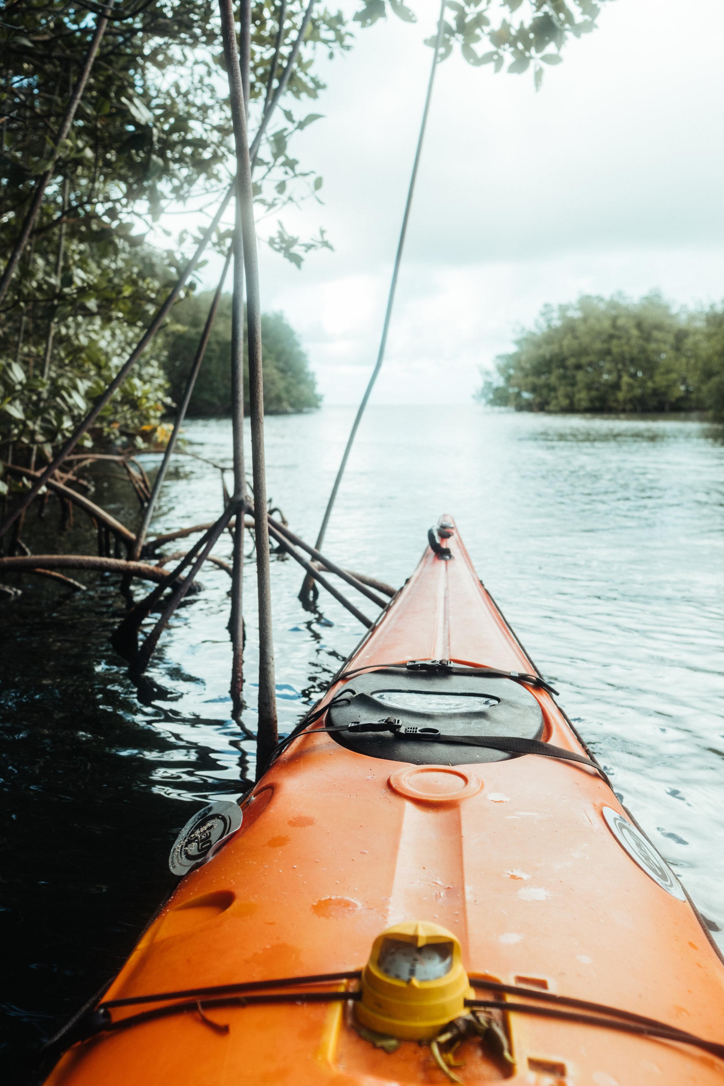 Guadeloupe-Buchowski-4.jpg