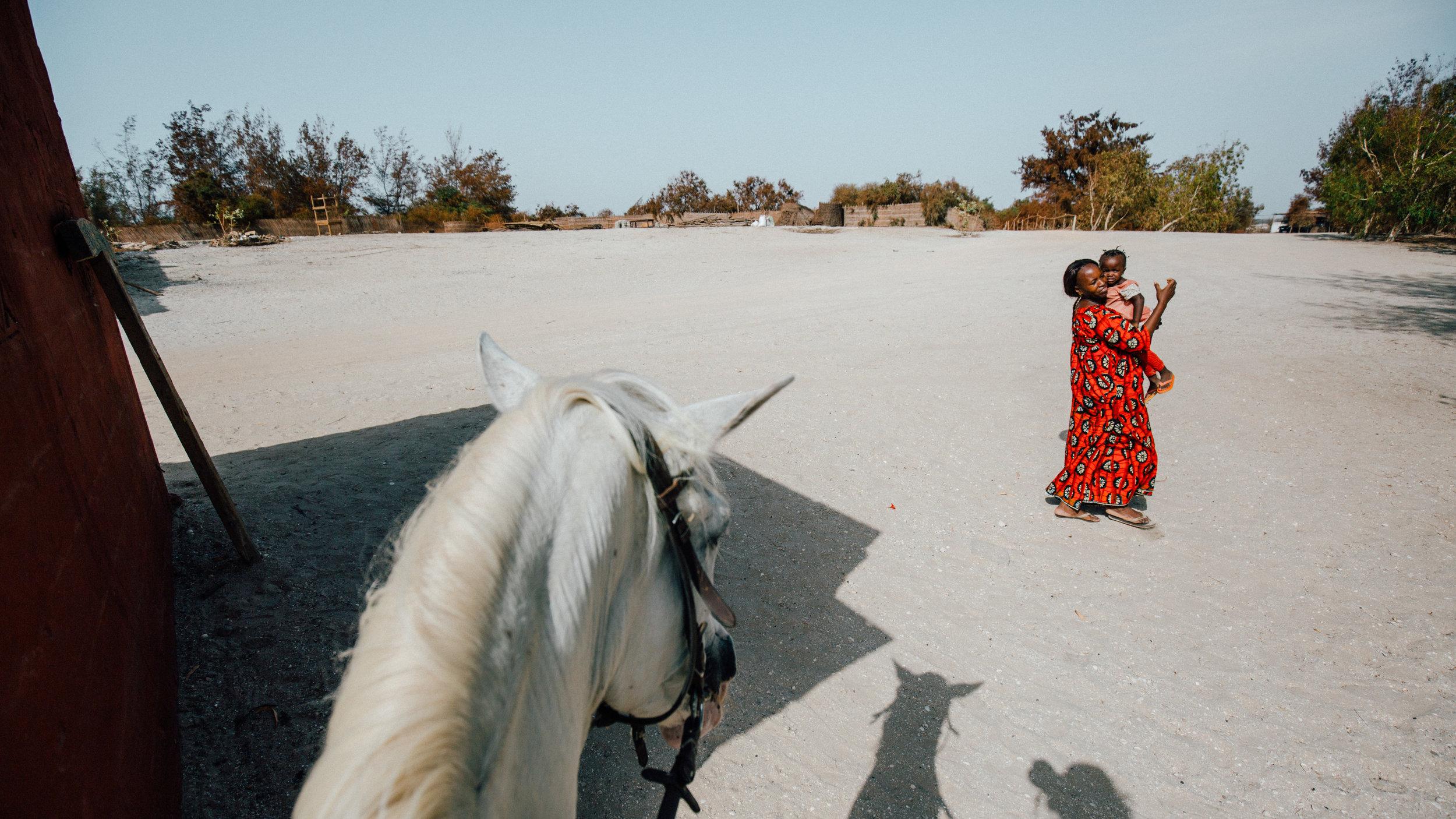 Senegal-16-9-8.jpg