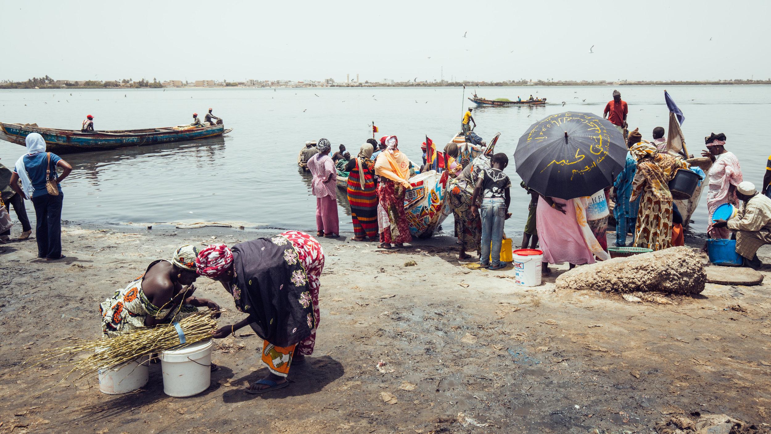 Senegal-16-9-33.jpg