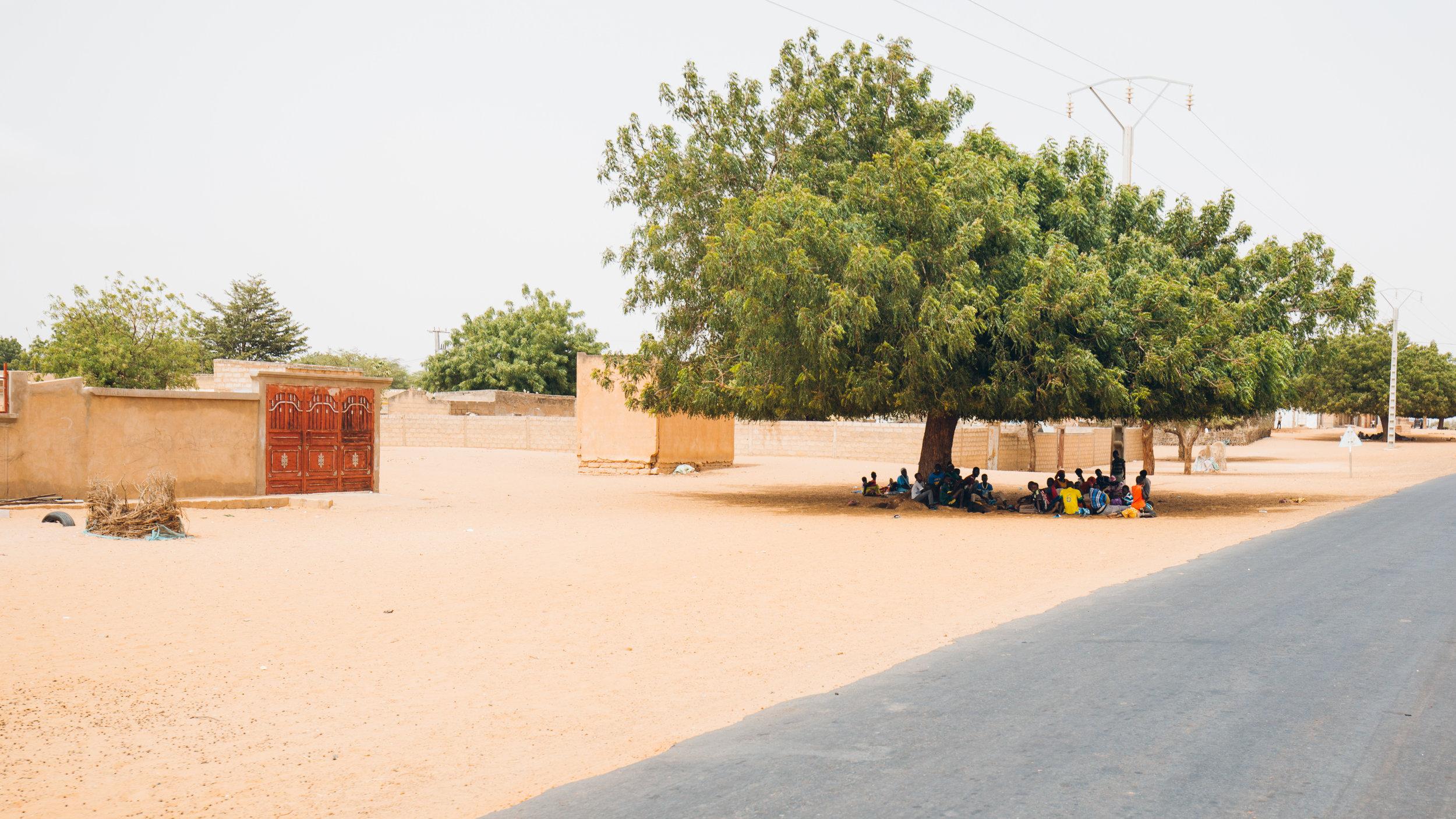 Senegal-16-9-49.jpg