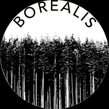 56e047c8b8fb2c8b20fef0d6_borealis_logo.png