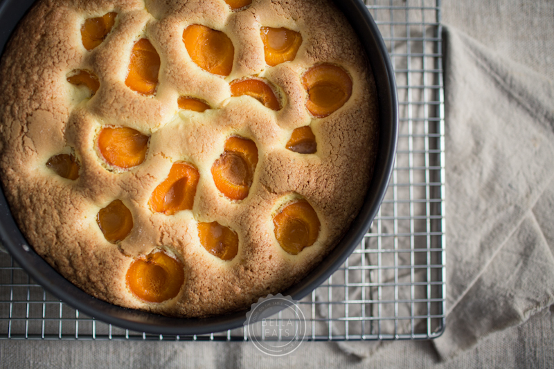 Apricot Cake0004.jpg