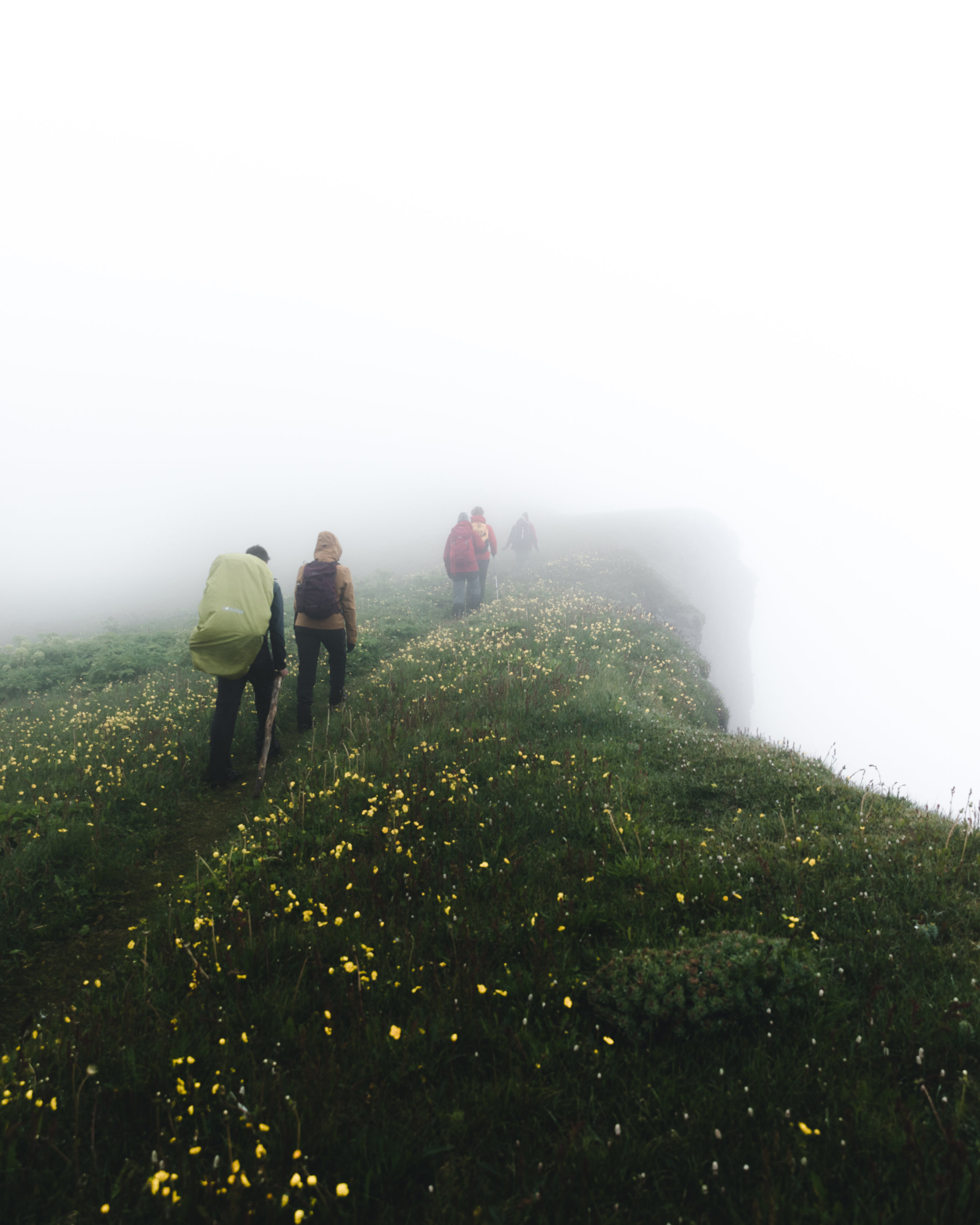 Green Cliffs - Hornstrandir, Iceland
