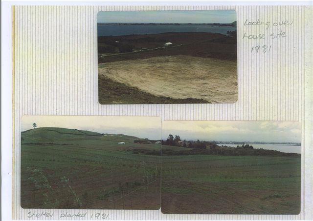 Sept 1981 - Aerial Views [looking over house site].jpg