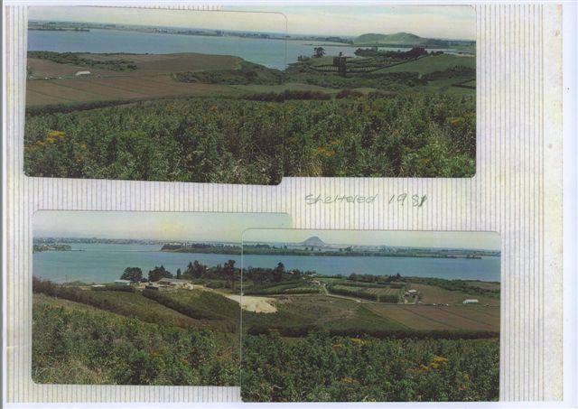 Sept 1981 - Aerial Views [sheltered 1981].jpg