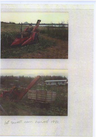 Sept 1981 - Aerial Views [1st Sweetcorn Harvest 1982].jpg