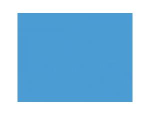 North_carolina-Logo_08-300x230.png