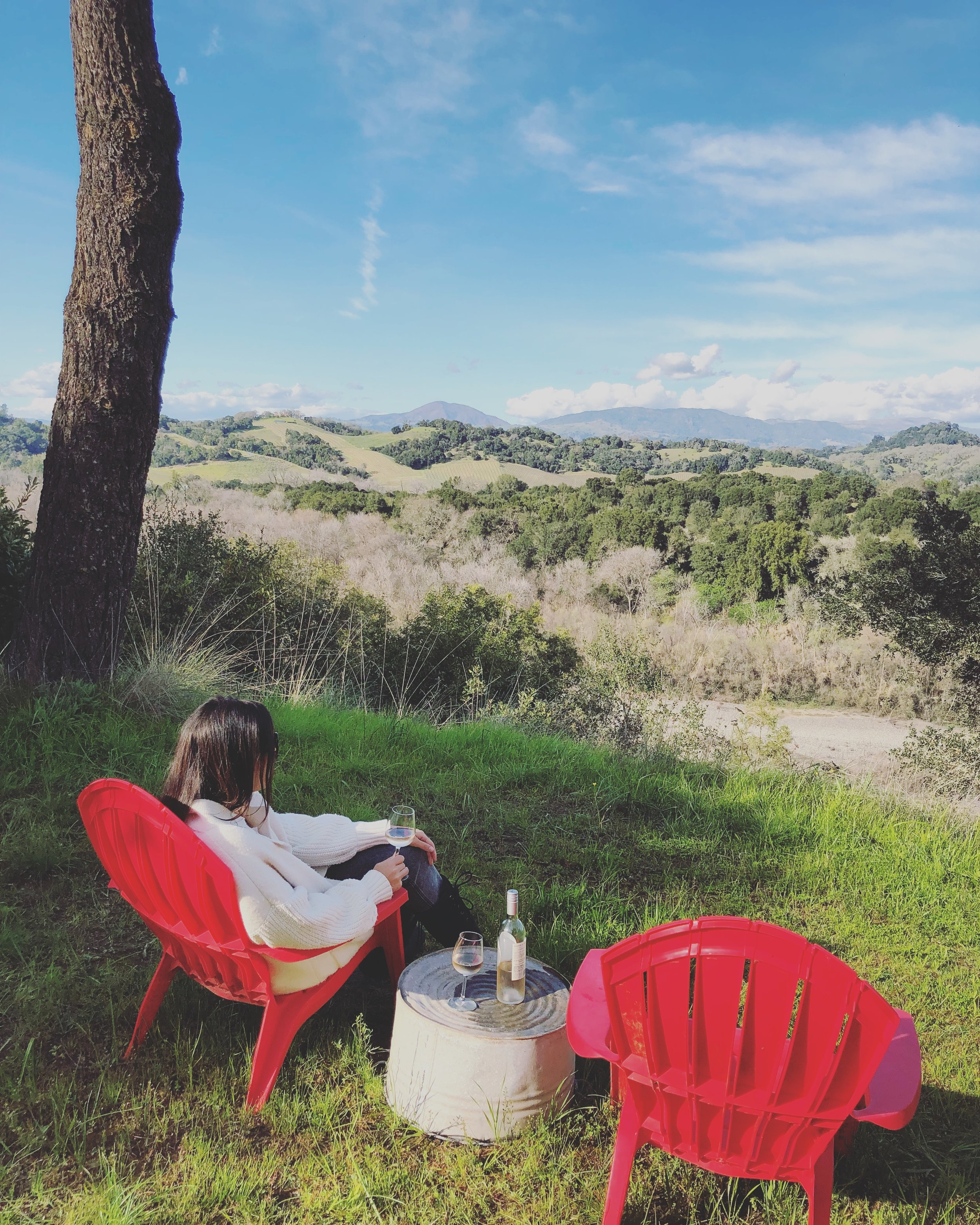Beautiful views (and rosé !) from the backyard of our Airbnb