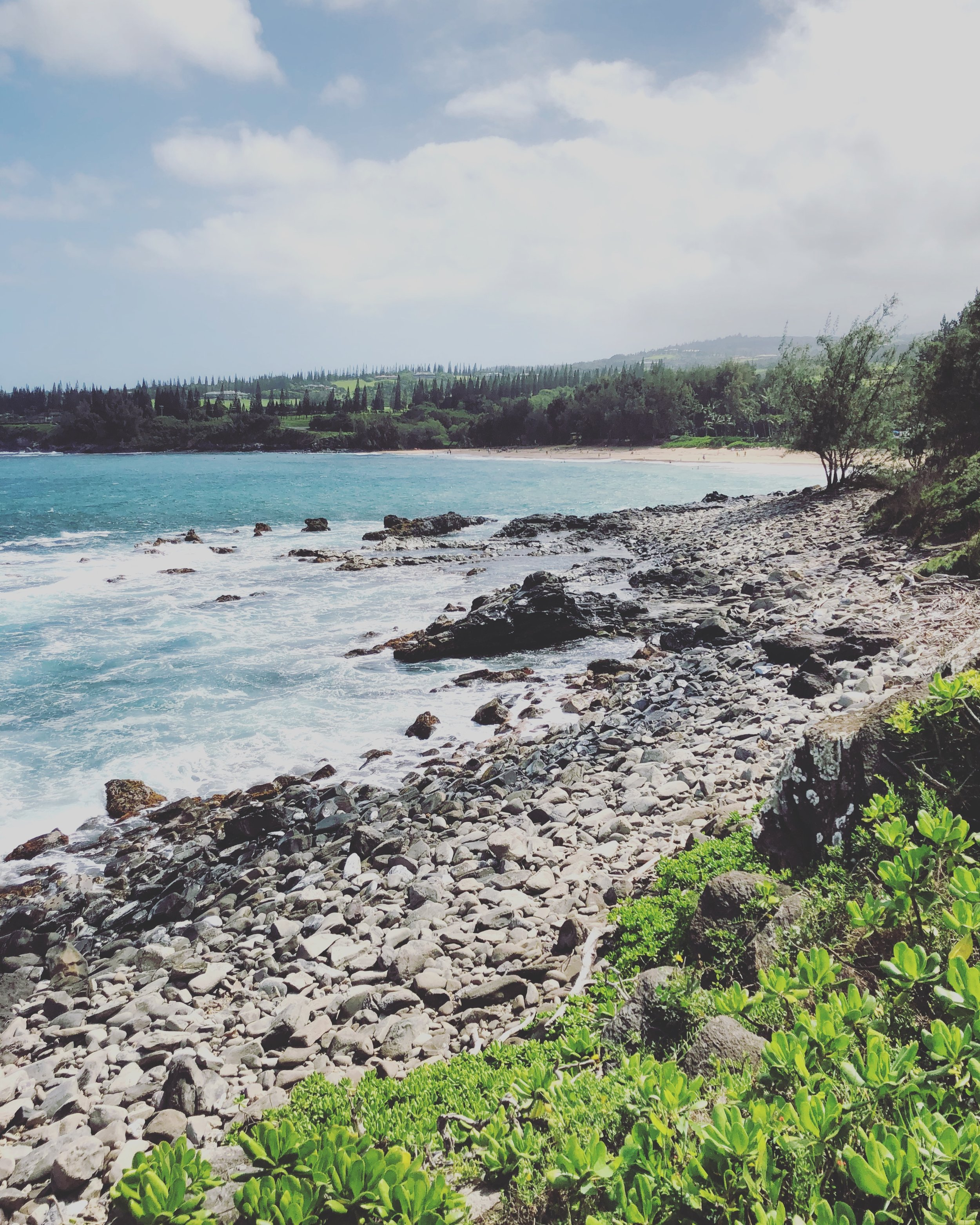 Scenic ocean views on the trail