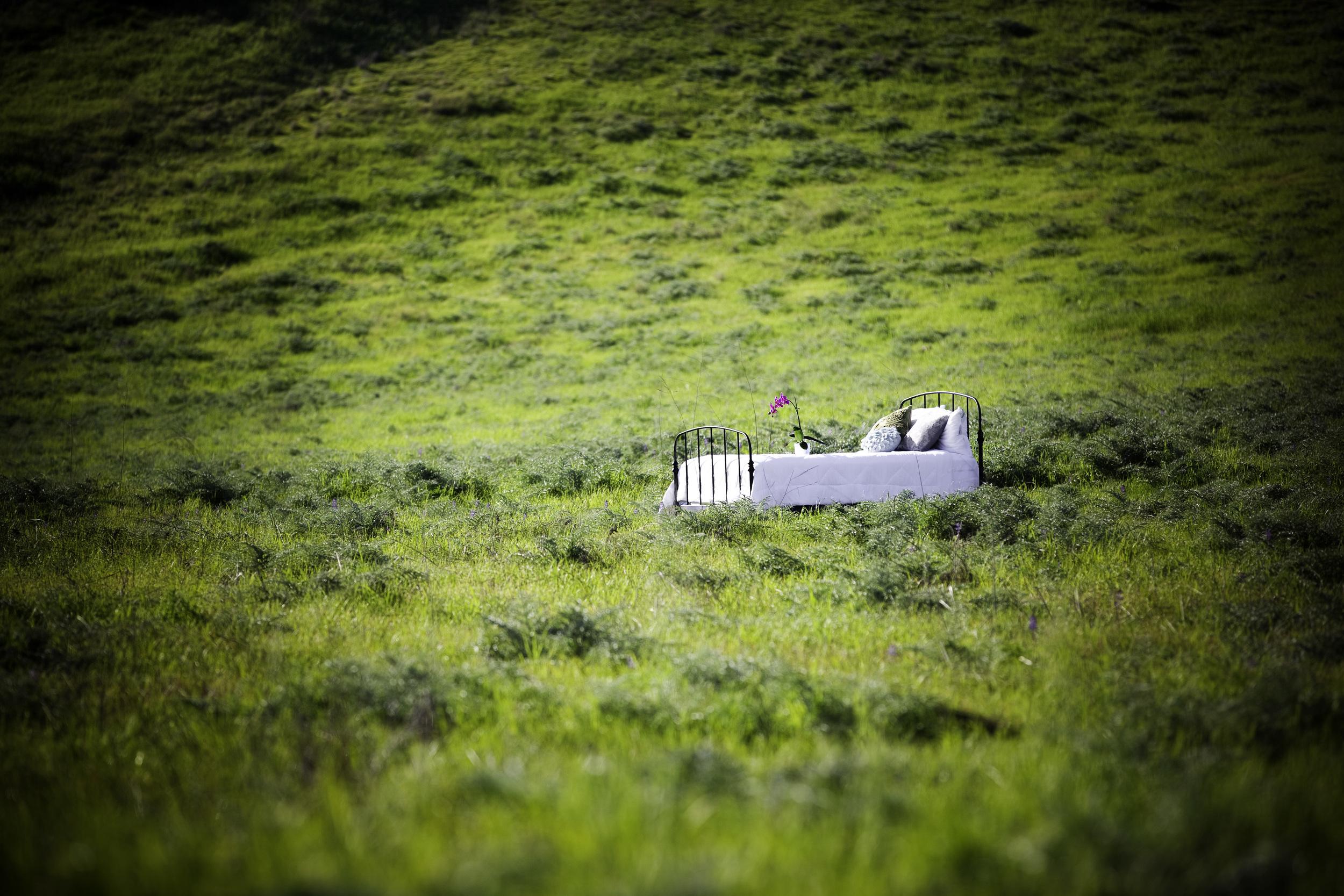 Bed in Field - General.jpg