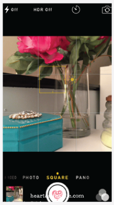 The iPhone Camera app: Use the square to set your focus and the sunshine to modify your exposure.