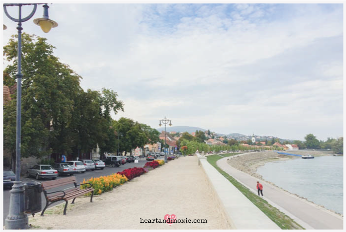 The walking path along the Danube River on the edge of town...