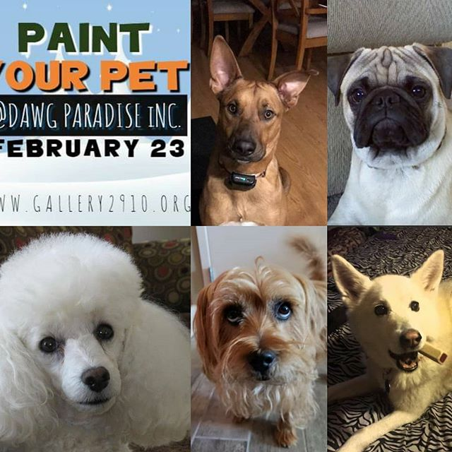 Tickets are going quick, get yours today! Look at some of the cute pups that will be painted!! Feb 23 at Dawg Paradise two classes 12 noon and 4pm