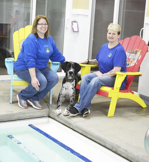 Photo by Kim Nowatzke Dawg Paradise Owners Annette Bloss and Laurie Clark pose with their Great Dane, Kya, near the pool-side suites and 14-by-20-foot heated swimming pool.