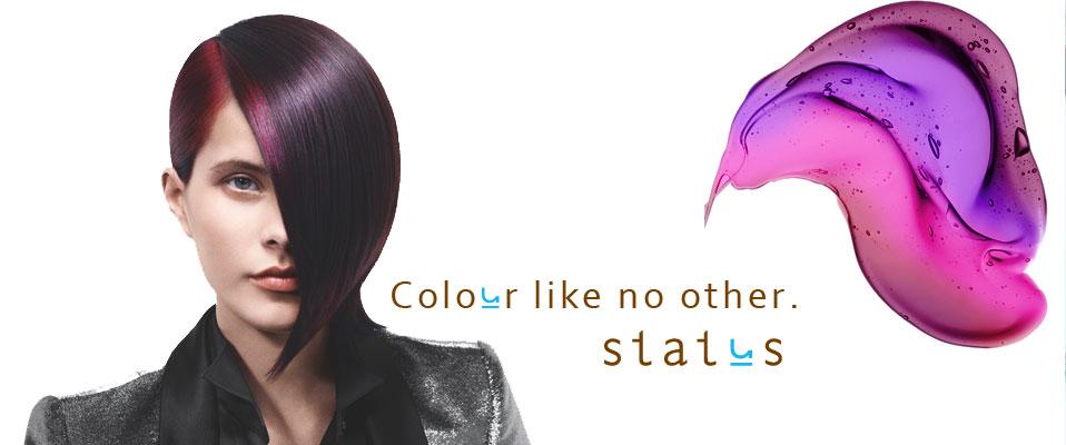 status_salon-ii_start1378935444_1.jpg