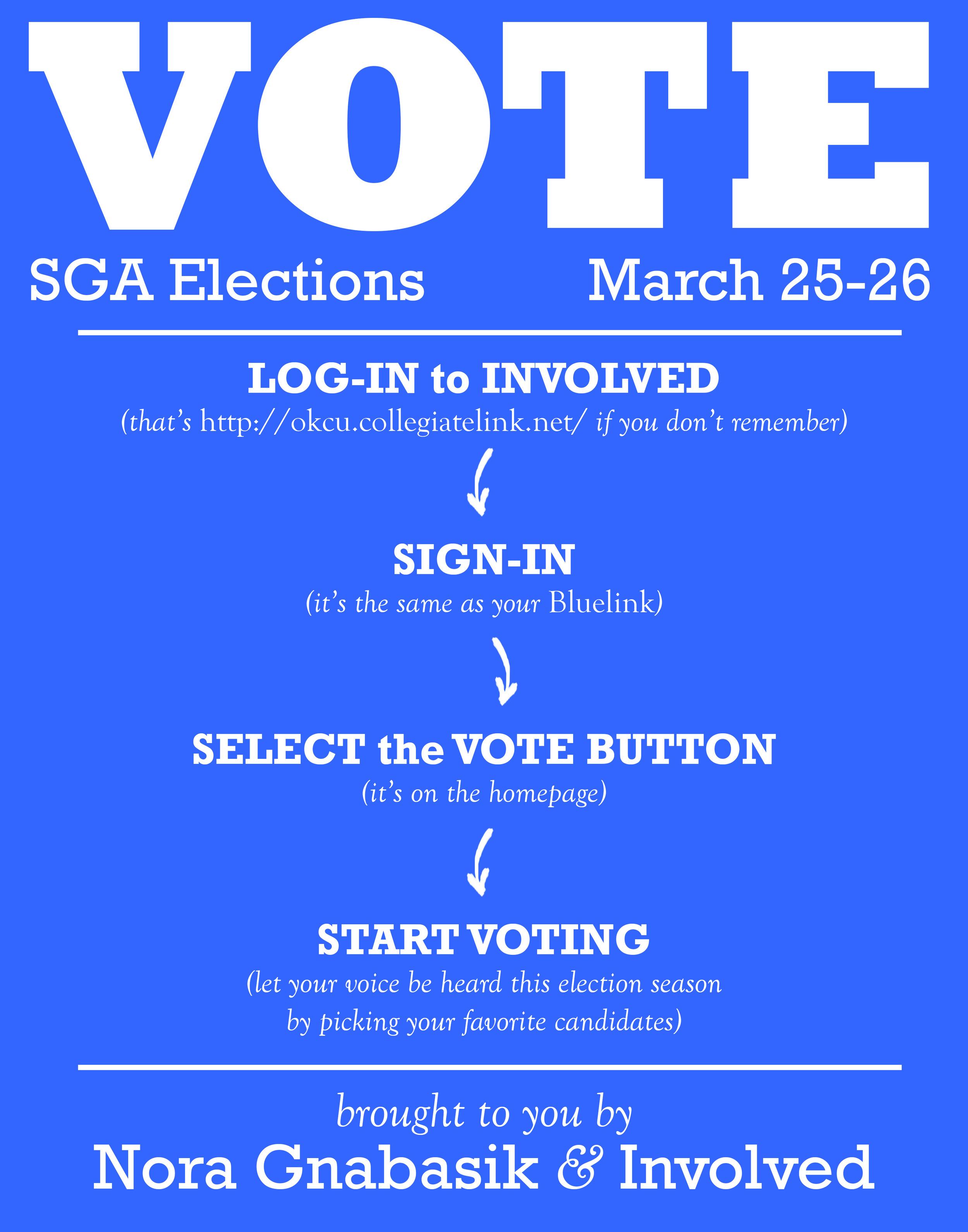 Vote Sign 2.jpg