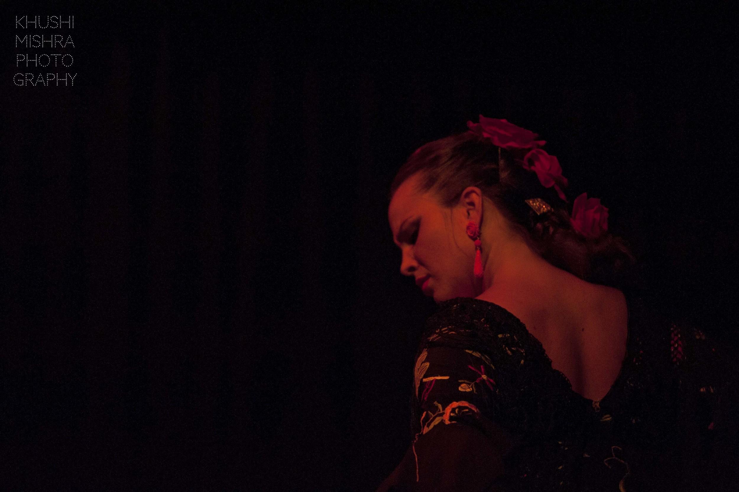 Flamenco_dsc_8026 copy.jpg