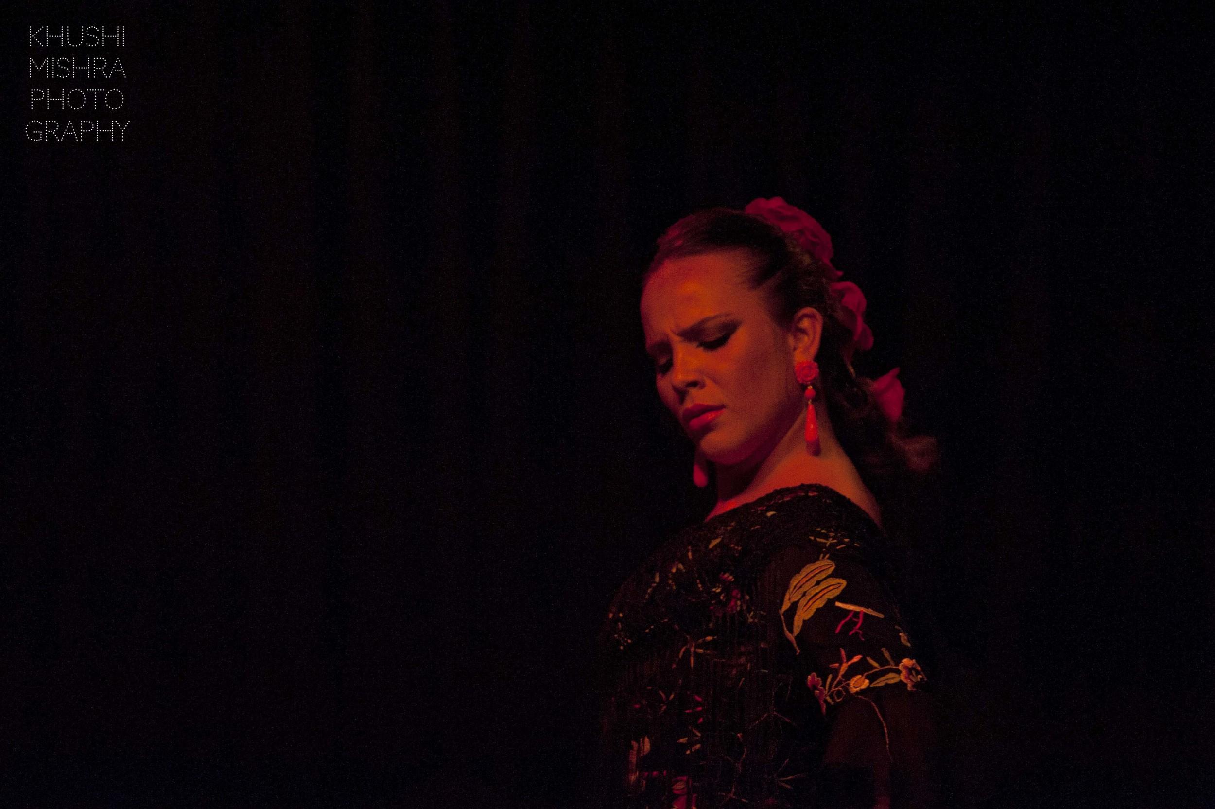 Flamenco_dsc_8027 copy.jpg
