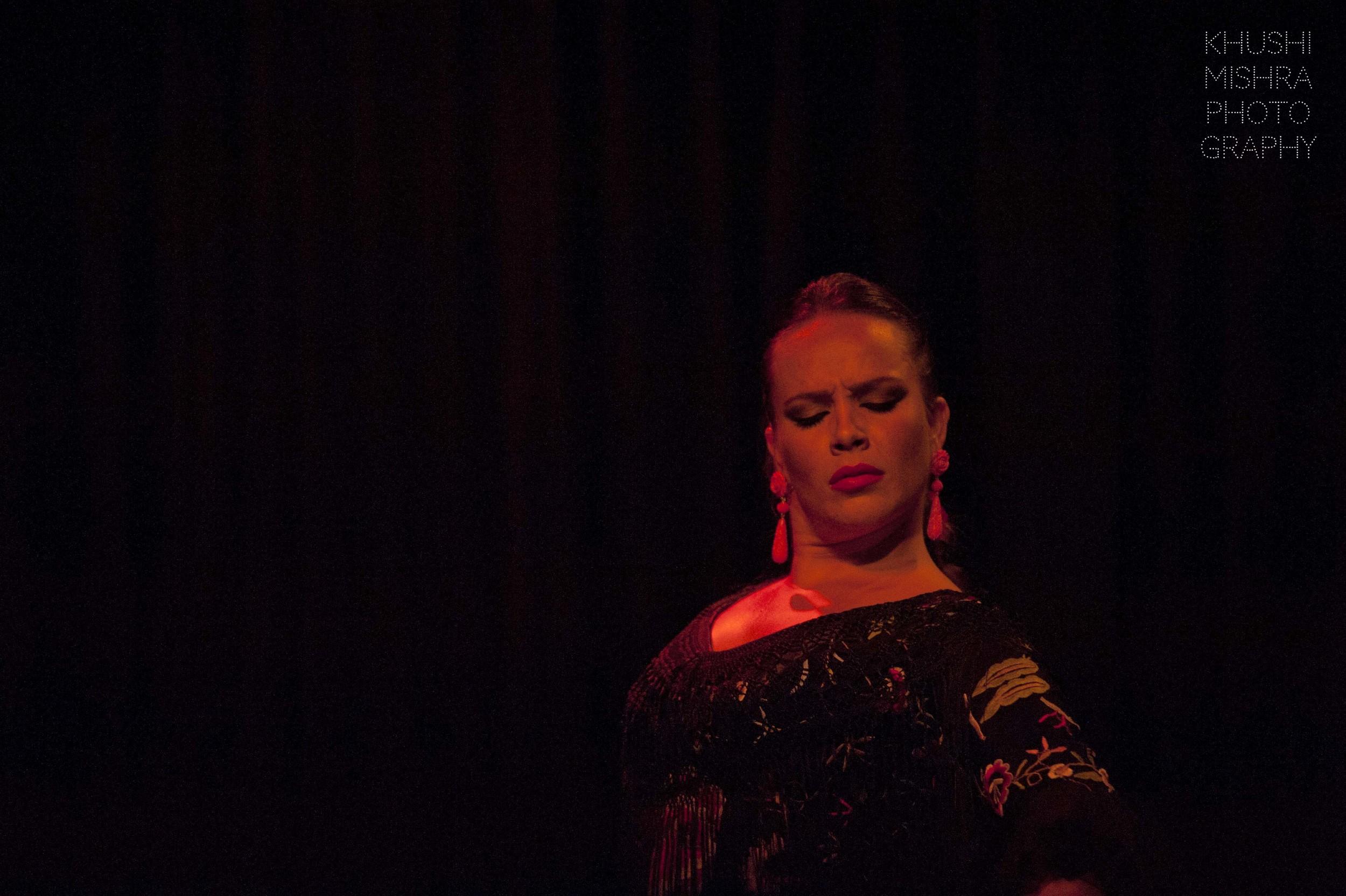 Flamenco_dsc_8028 copy.jpg