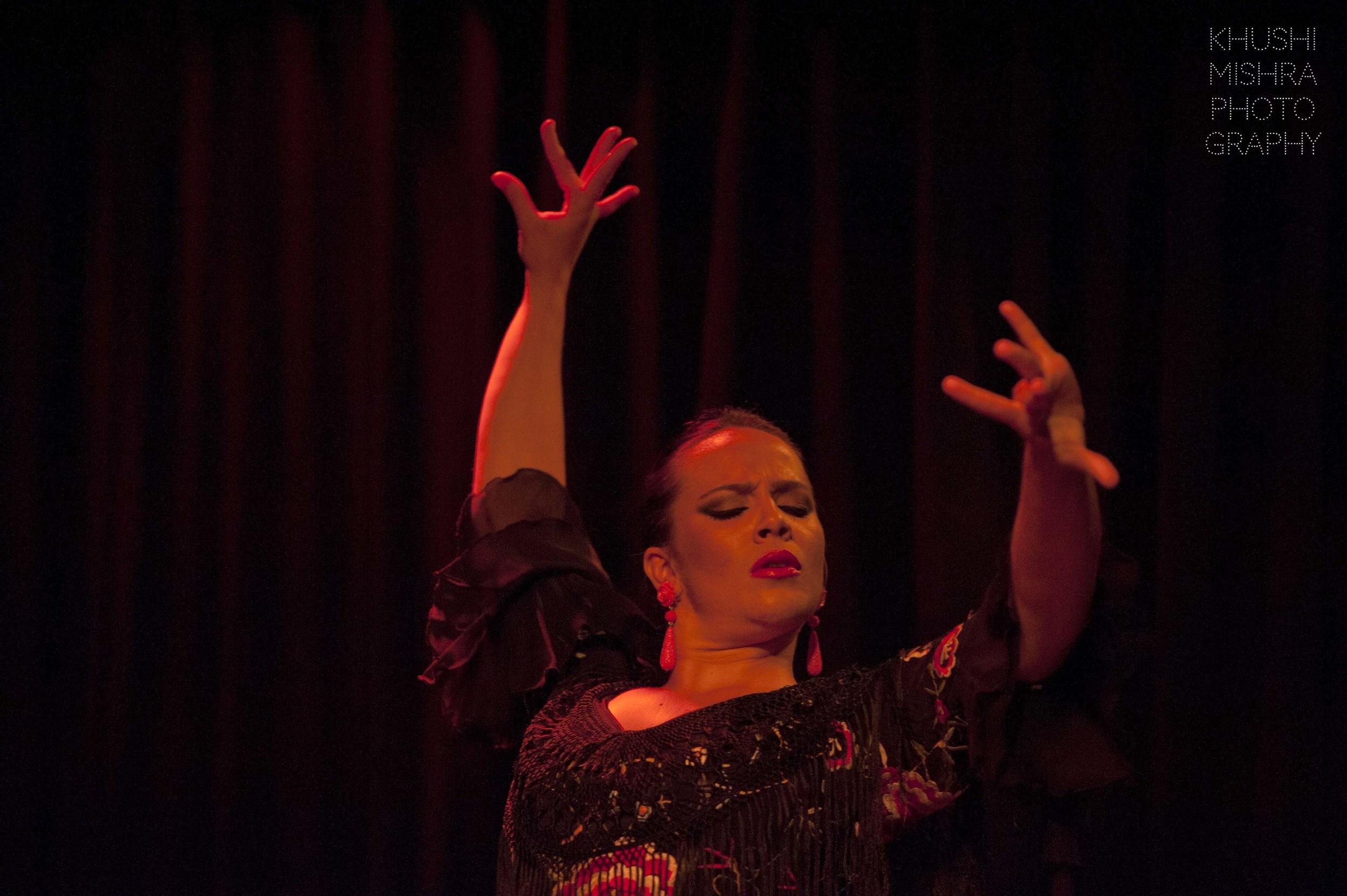 Flamenco_dsc_8029 copy.jpg