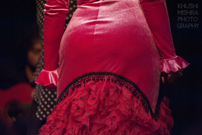 Flamenco_dsc_7916 copy.jpg
