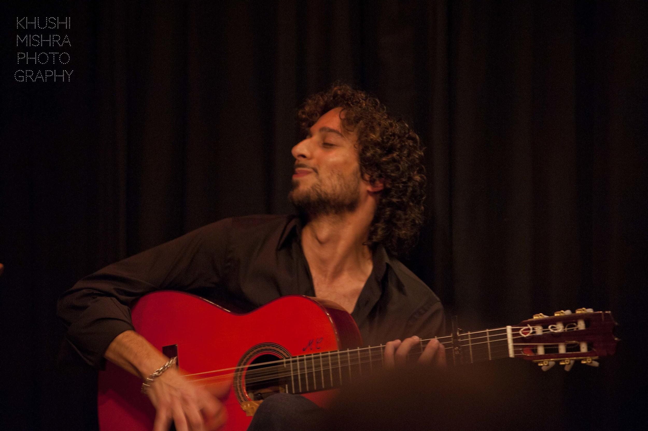 Flamenco_dsc_8012 copy.jpg