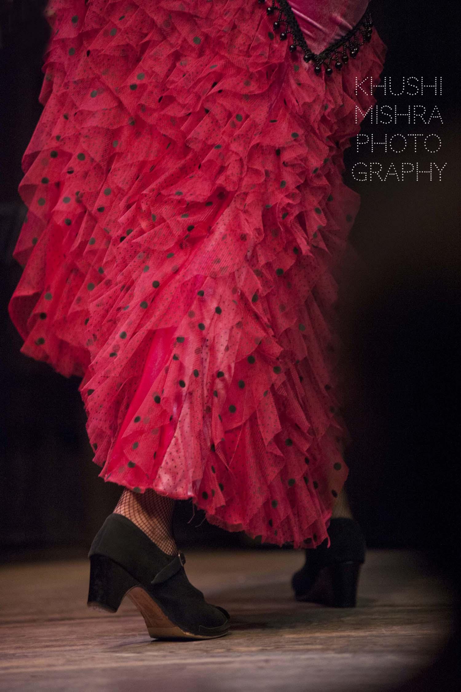 Flamenco_dsc_7923 copy.jpg