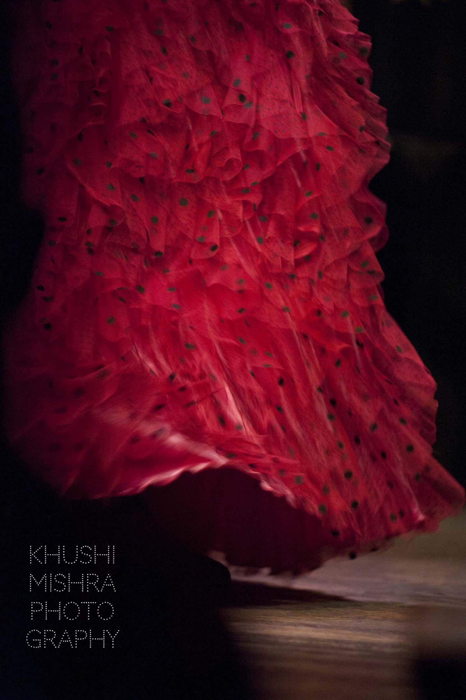 Flamenco_dsc_7945 copy.jpg