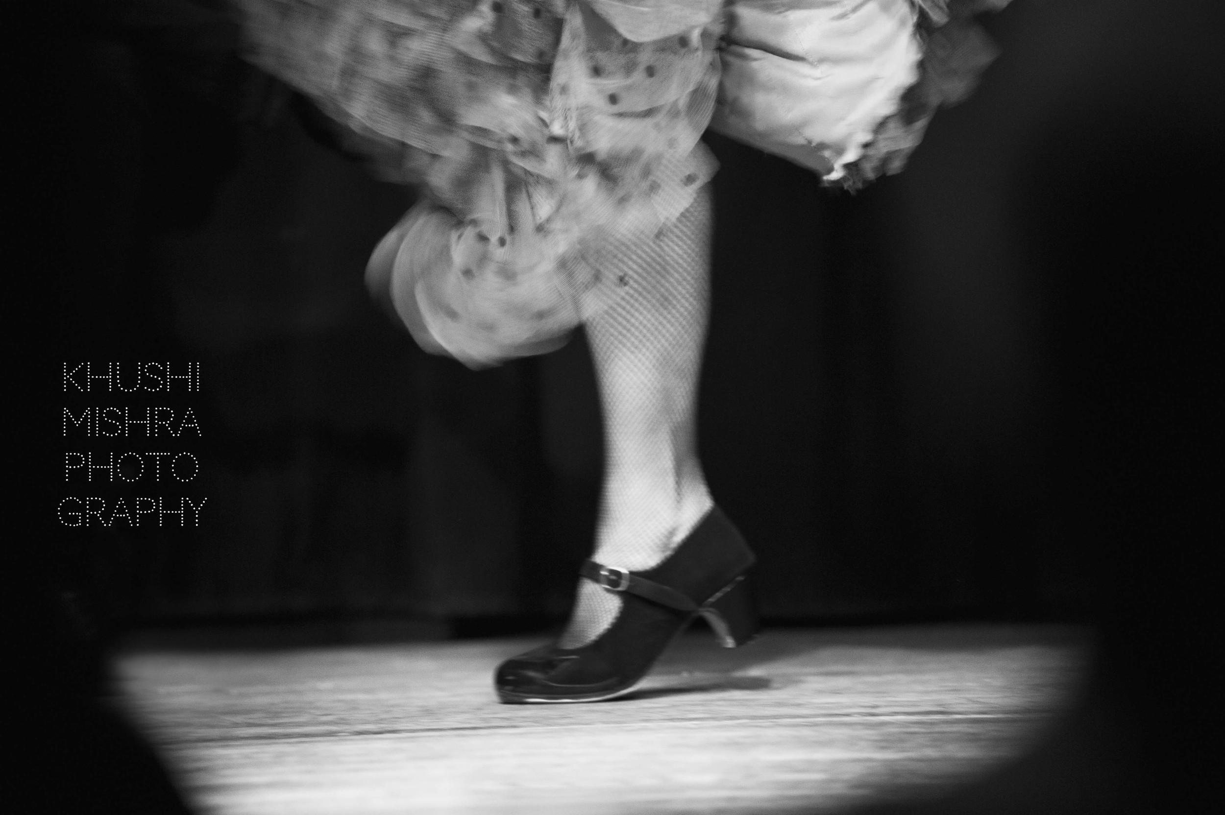 Flamenco_dsc_7966 copy.jpg