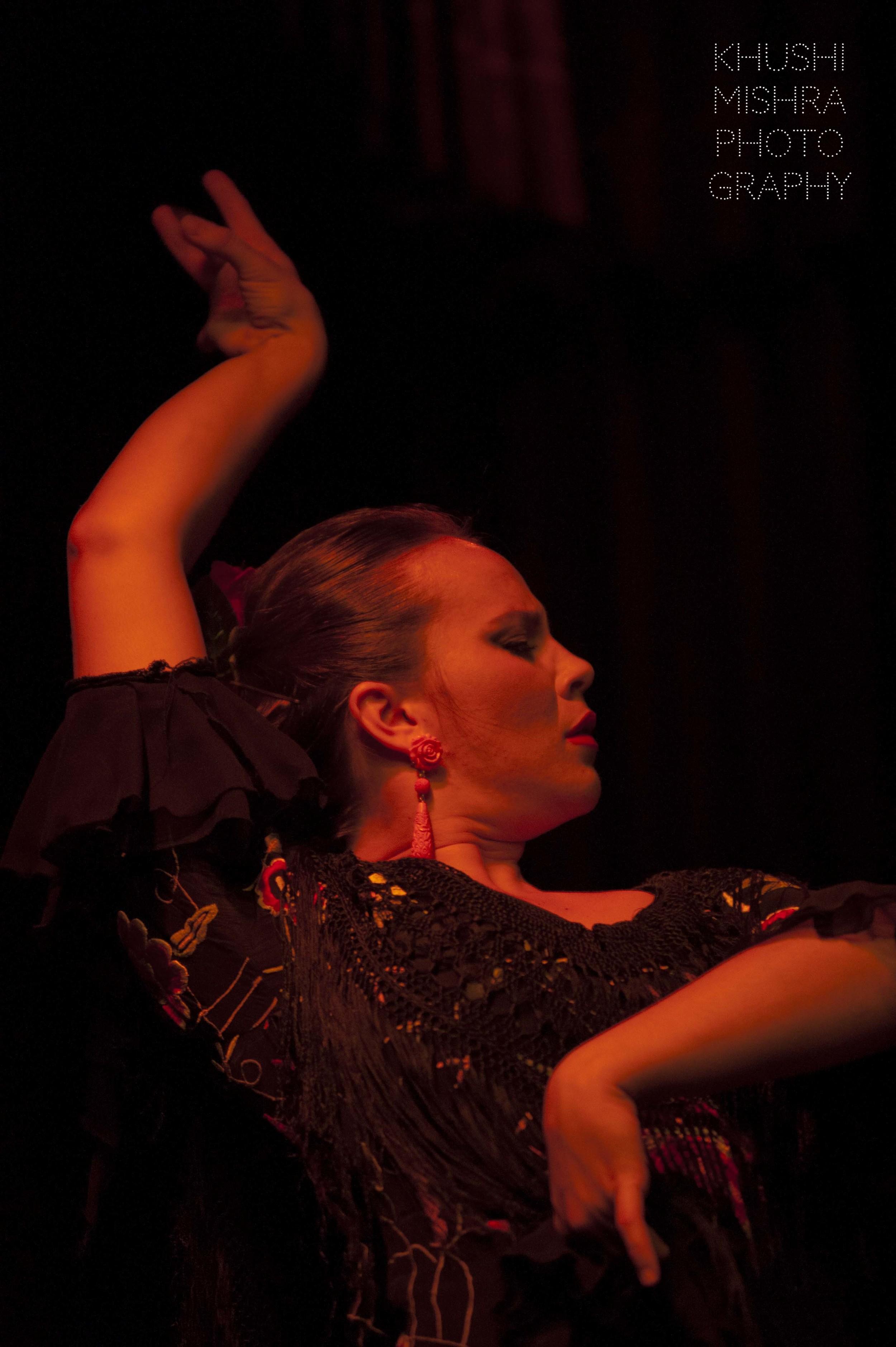Flamenco_dsc_8033 copy.jpg