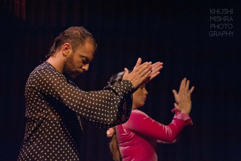 Flamenco_dsc_7899 copy.jpg