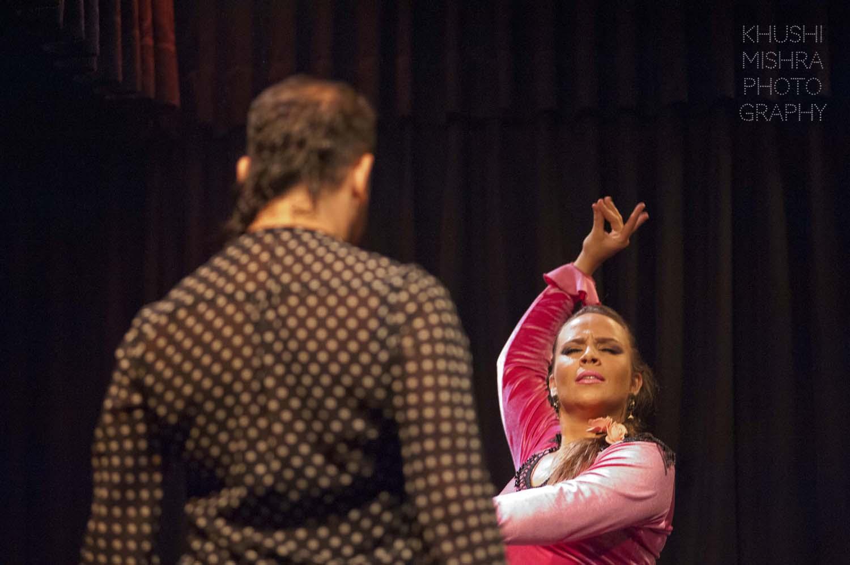 Flamenco_dsc_7904 copy.jpg