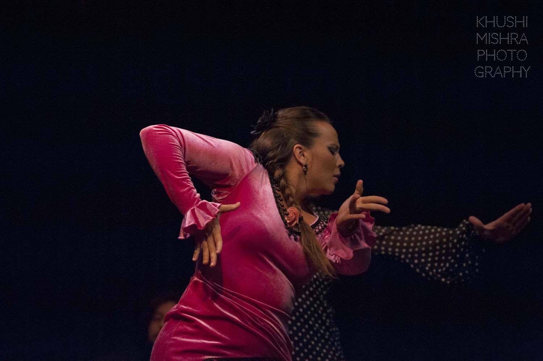 Flamenco_dsc_7908 copy.jpg