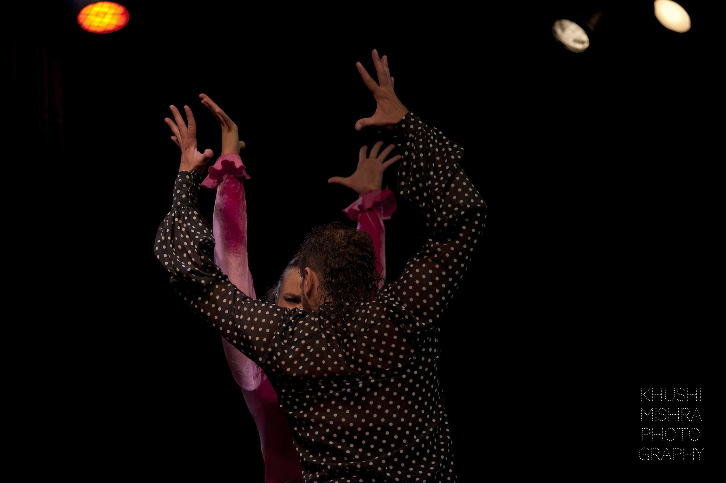 Flamenco_dsc_8000 copy.jpg