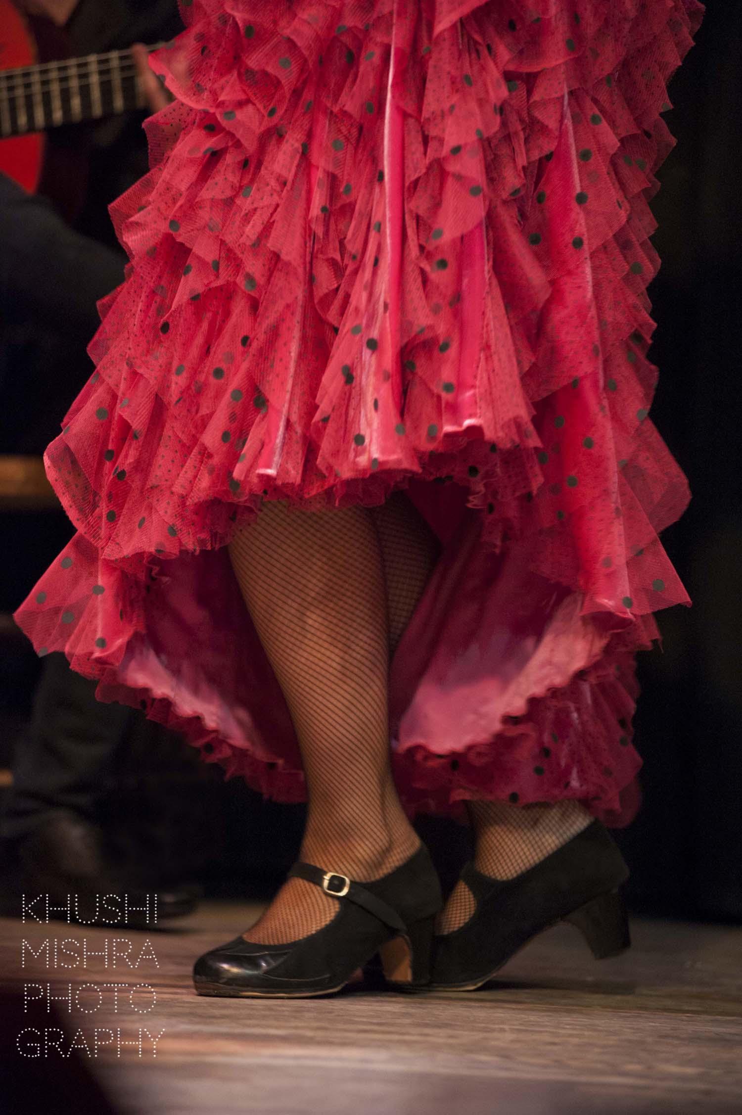 Flamenco_dsc_7944 copy.jpg