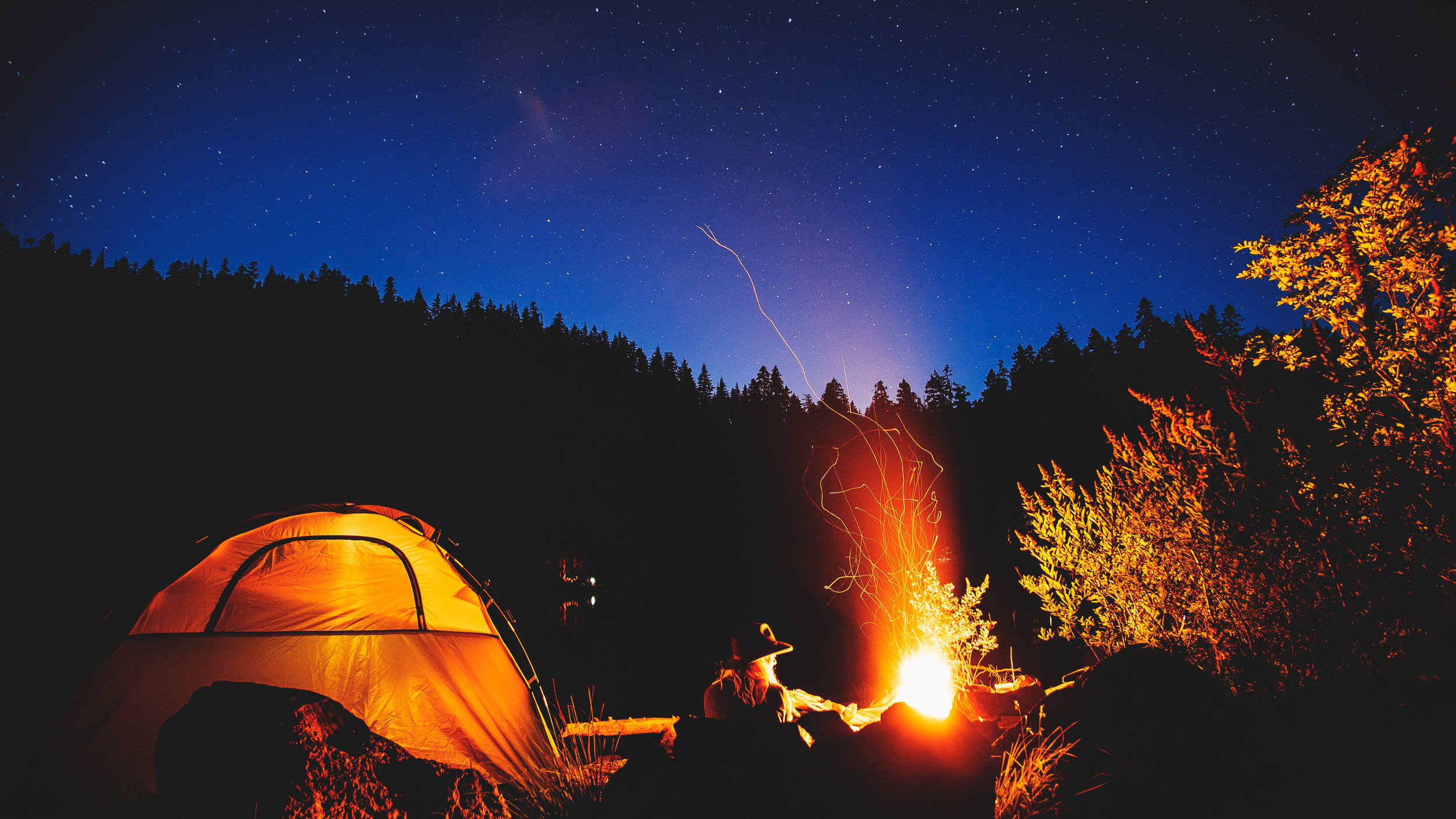 Campfireflies.jpg