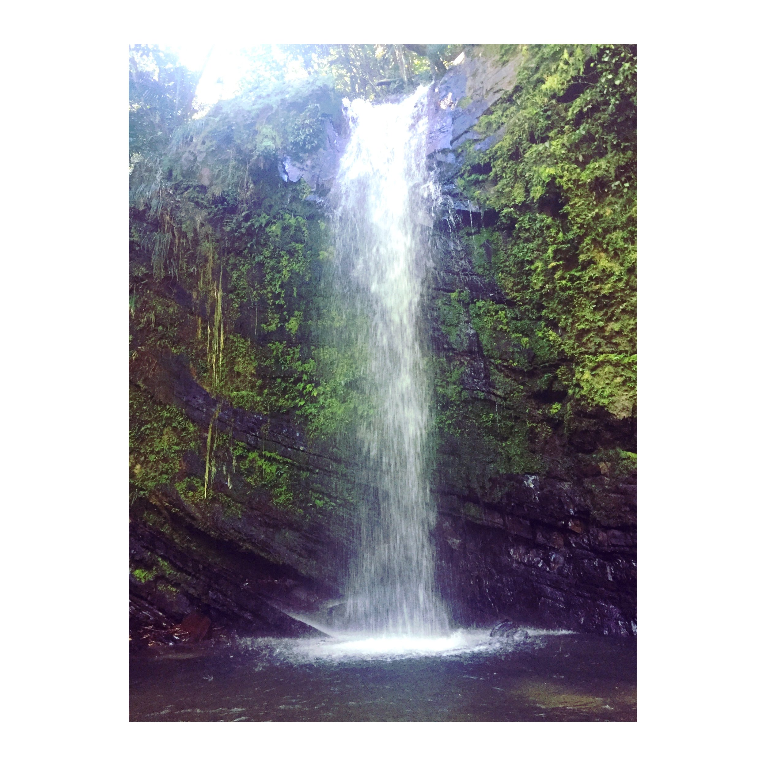 After we finished our hike, Charlito took us to La Coca Waterfalls, which was absolutely gorgeous.The water was refreshing after being covered in mud from climbing trails.The water was so clean and crisp.After we dried up, my hair and skin felt like silk.