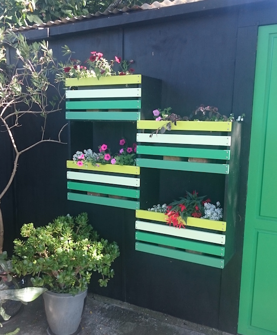 Vertical wall garden - newsletter.jpeg