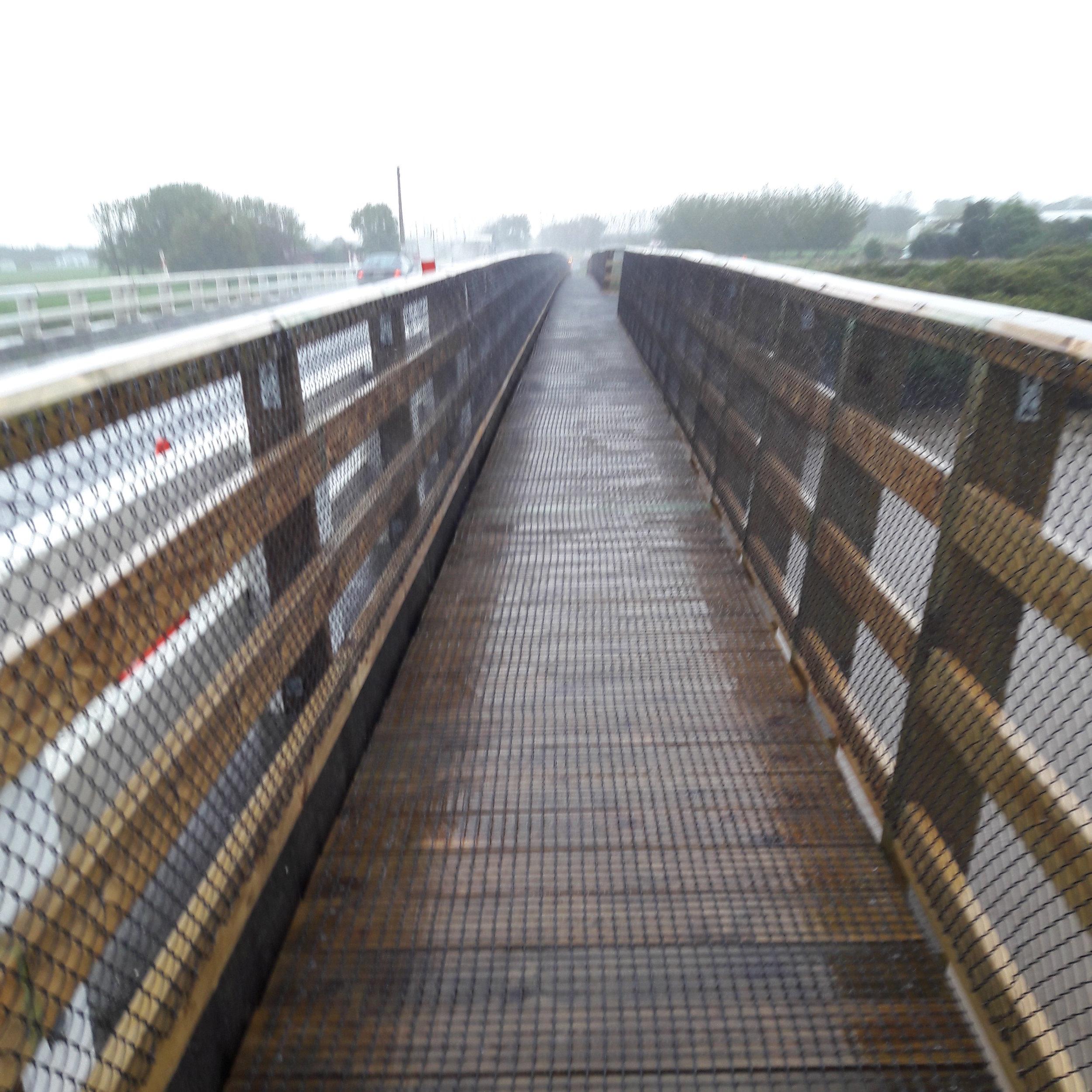 Waikato bridge completed.jpg