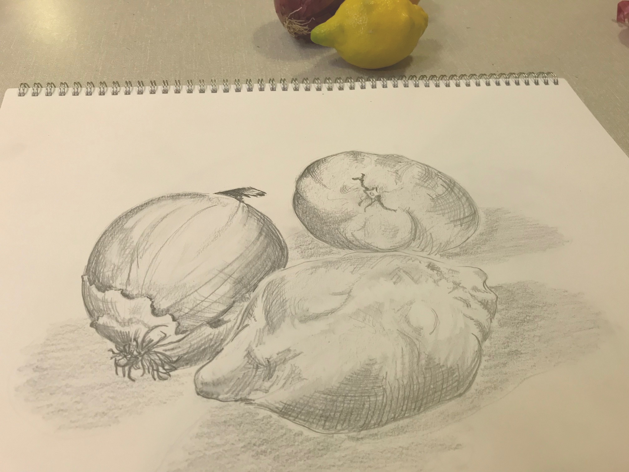 Drawing (pencil)  by adult student