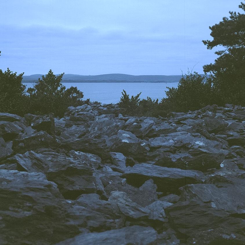 Garnish_Island_10.jpg