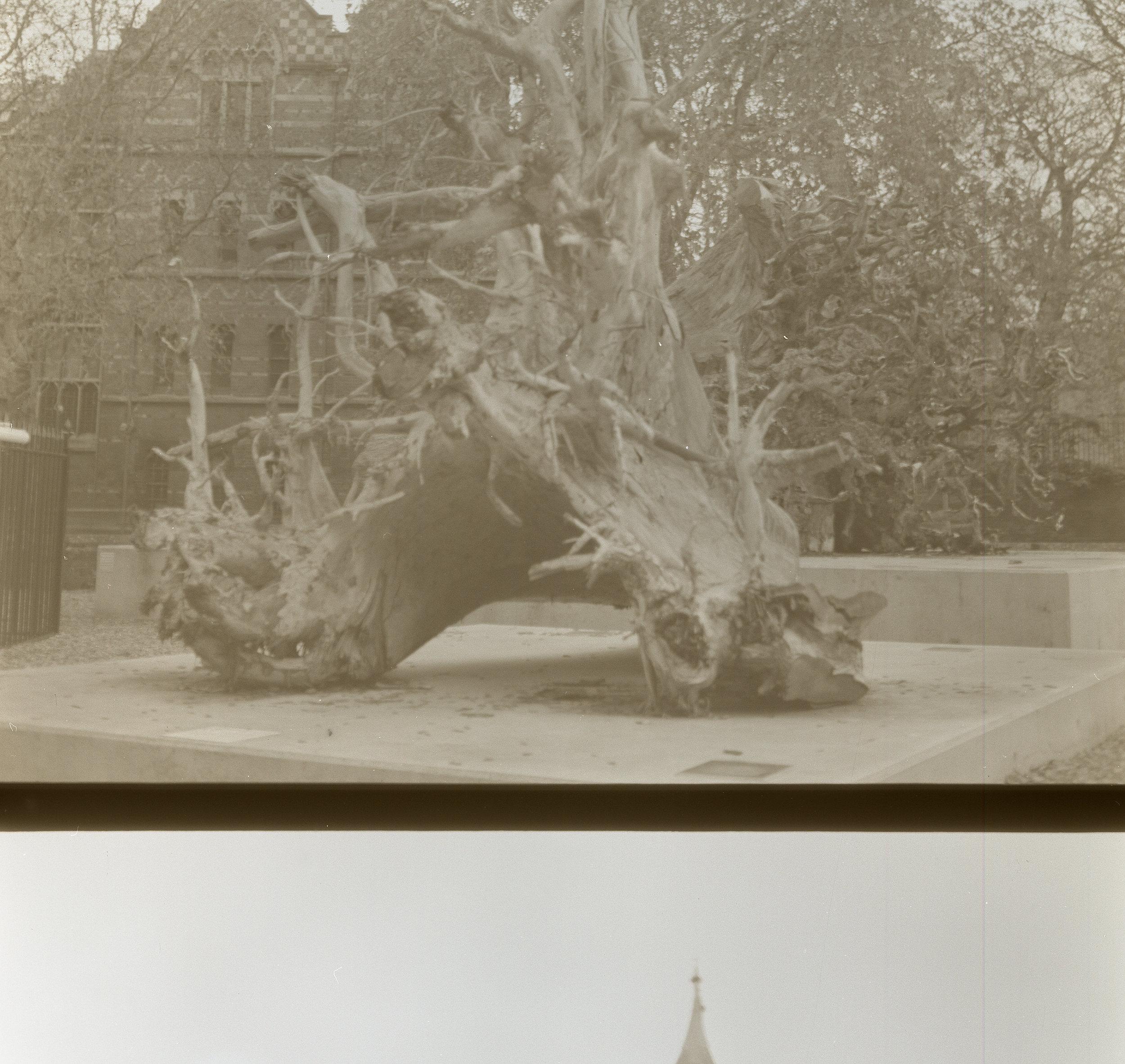 Camera: Yashica Mat-124G  Film: Lomography B&W 100  Location: Oxford, England