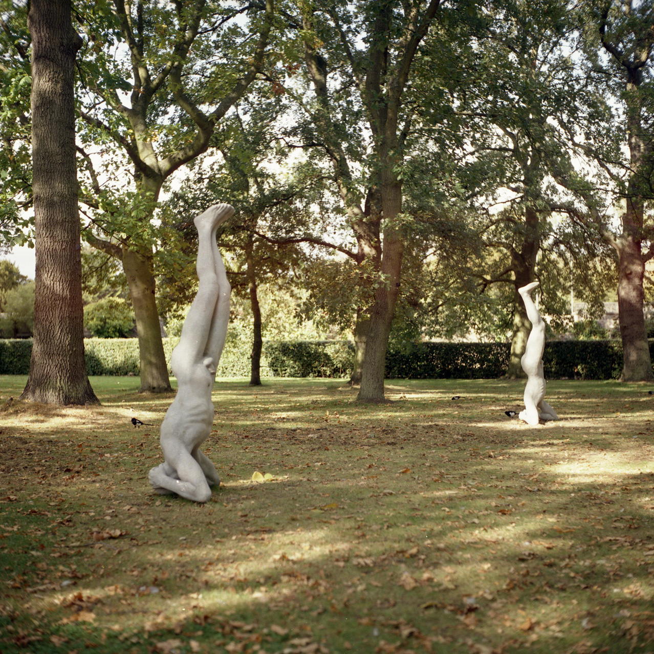 Twins - Sculpture in Context, 2011