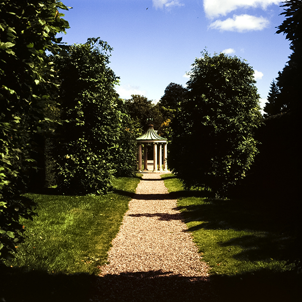 Camera: Hasselblad 500C/M  Film: Fujichrome Velvia 100  Location: Farmleigh Walled Garden, Dublin, Ireland