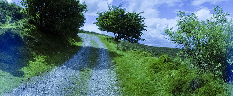 Camera: Horizon Perfekt  Film: Kodak FC 400  Location: Co Sligo, Ireland