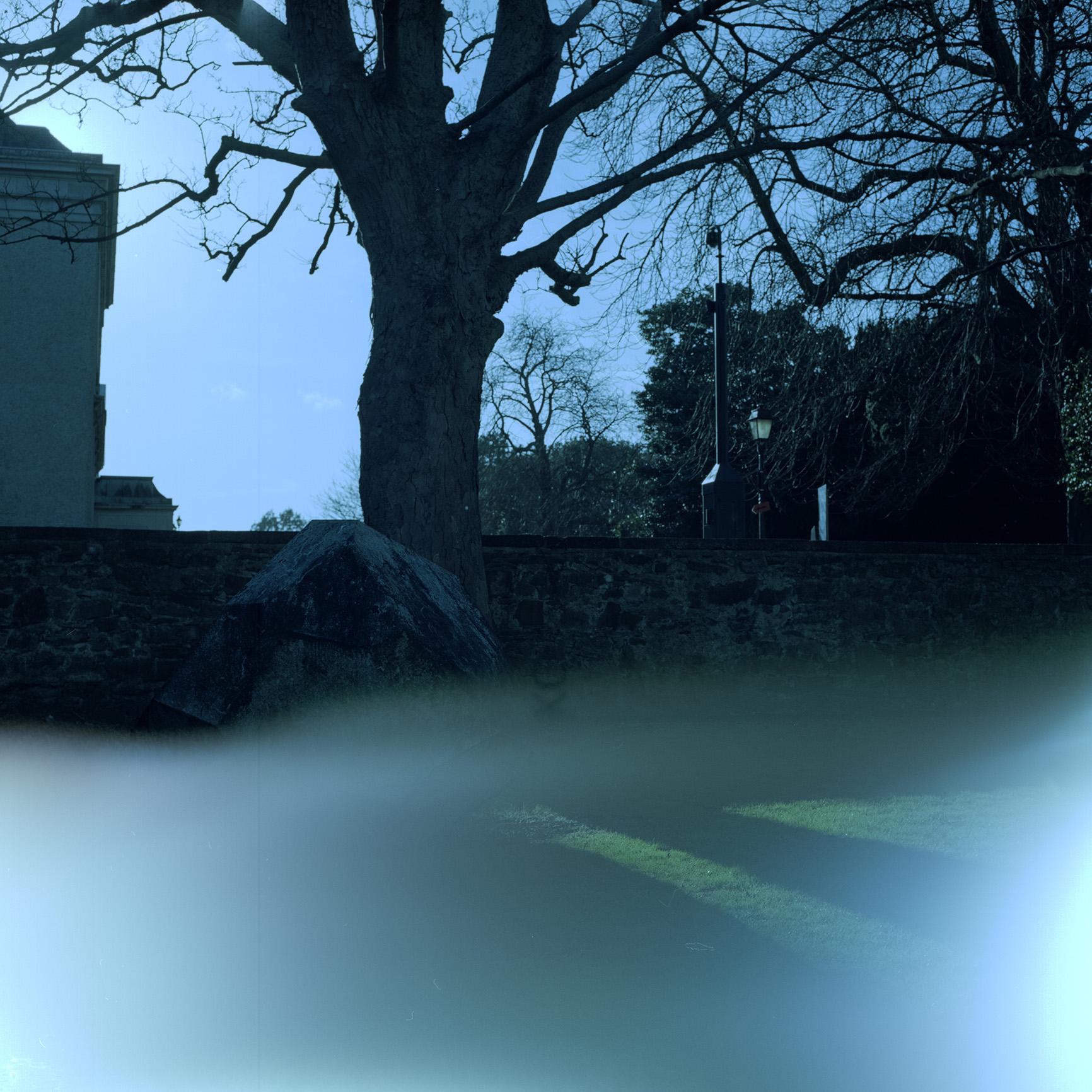 Camera: Hasselblad 500C/M  Film: Kodak New Portra 160  Location: IMMA, Dublin, Ireland
