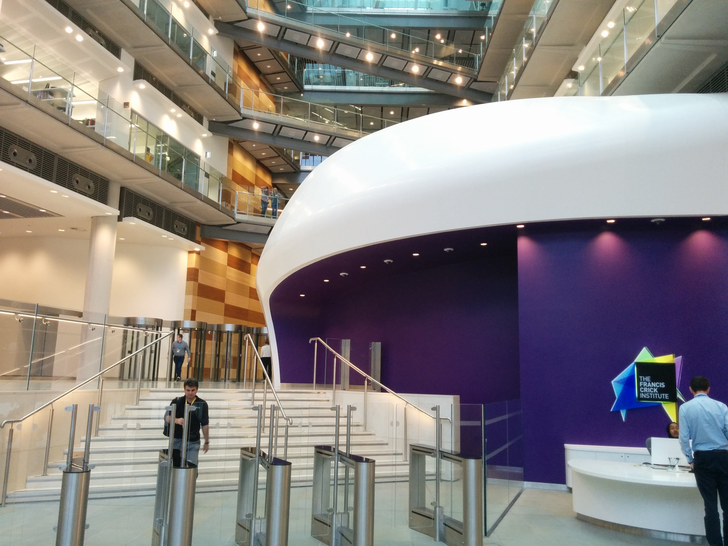 The Frances Crick Institute is situated beneath St Pancras International railway station in London.