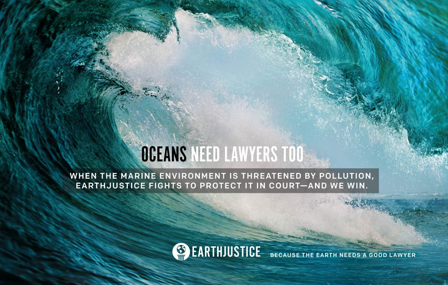 Ad launching the Earthjustice oceans campaign 2014.