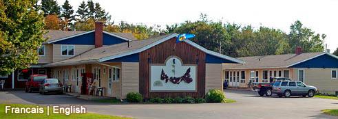 shine motel 3.jpg